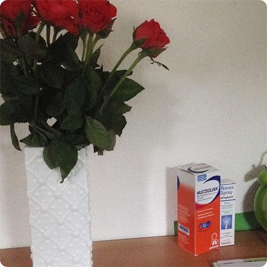 12 von 12 - April 2014 - Medizin und Rosen