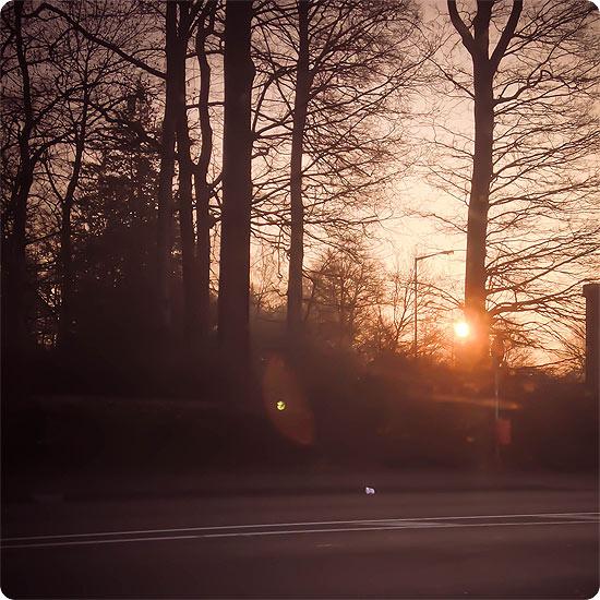 12 von 12 - März 2014 - Sonnenaufgang