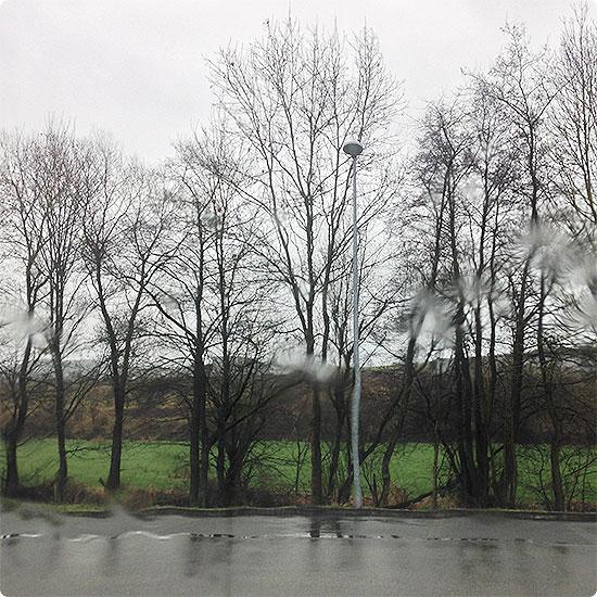 12 von 12 - Januar 2015 - blödes Wetter - nur Regen