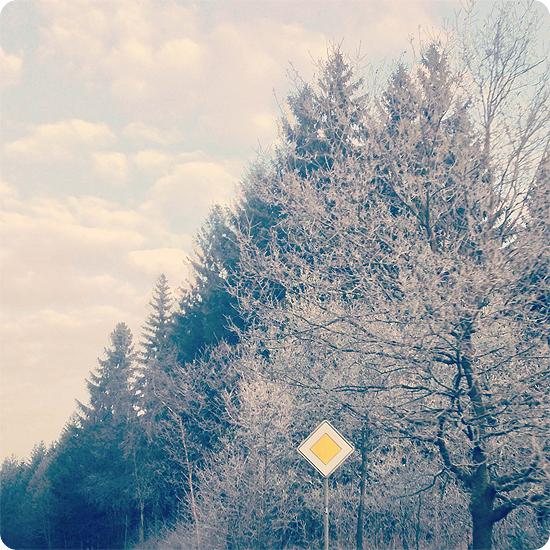 7 Tage - 7 Bilder | KW#13 | Raureif - kalt - morgens