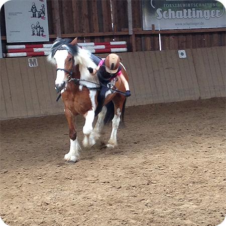Reiten Sturz vom Pferd im August 2013