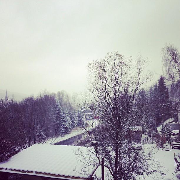 Schnee - 12.12.2012