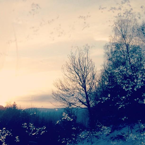 Sonne bei Schnee - 13.02.2013