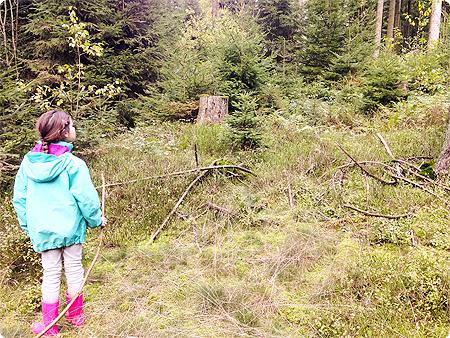 Waldspaziergang - Herbst 2013 - Wald - die Prinzessin - Kind - spielen
