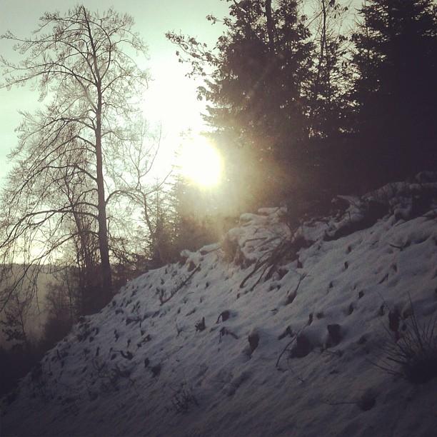 Sonne - 18.02.2013