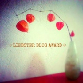 Liebster Blog Award - Danke!