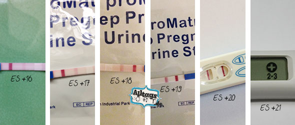 Schwangerschaftstests