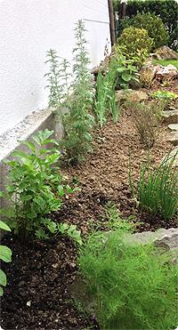 Ein Garten entsteht. #2 - die perfekte Kräuterecke