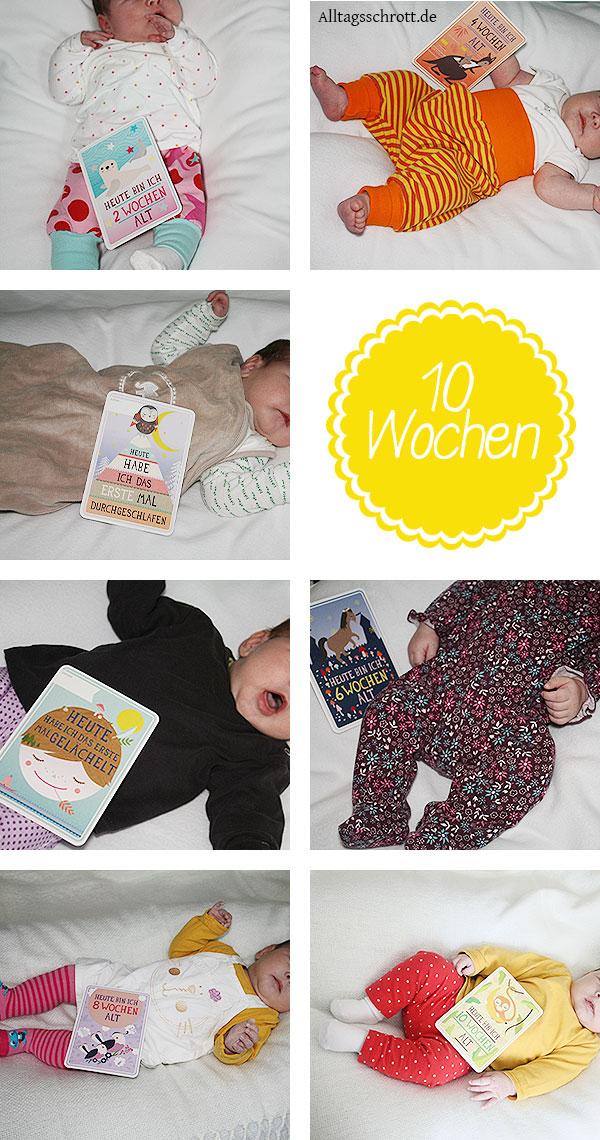 10 Wochen Baby - Zusammenfassung - Übersicht - Fotos