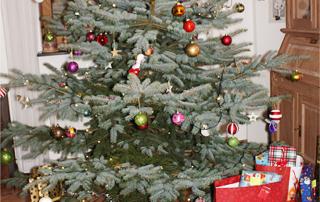 Weihnachten - es ist vorbei