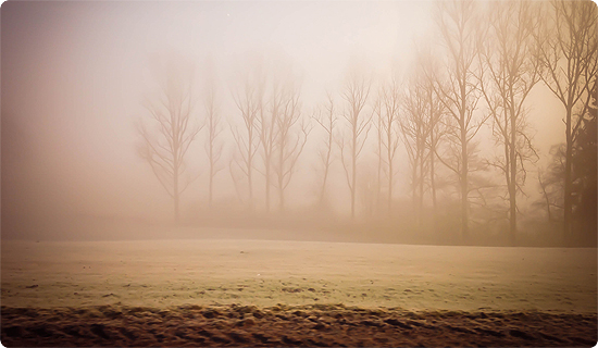 7 Tage - 7 Bilder   KW#10   Nebel am Morgen