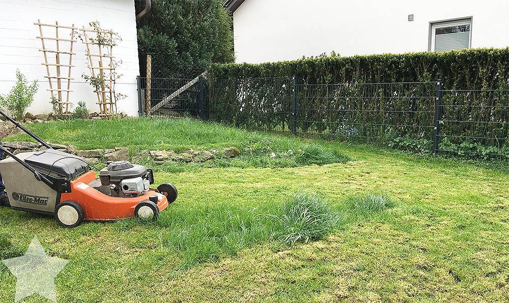 Wochenende in Bildern - Rasen mähen