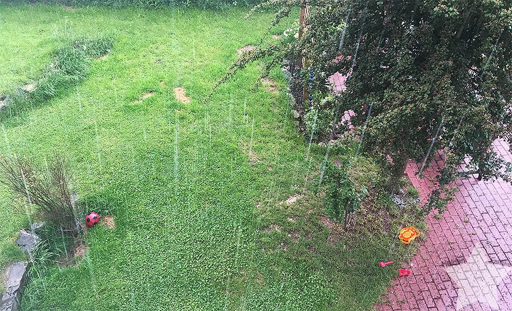 12 von 12 im Juni - Regen am Sonntag