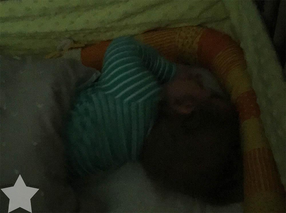 12 von 12 im Juni - Lotte schläft