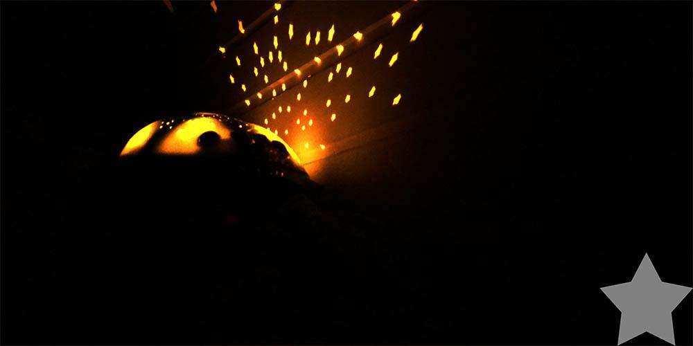 Wochenende in Bildern - Schildkröte mit Sternenlicht