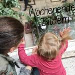erste Kinderschuhe & ein Baby-Basar-Besuch | Wochenende in Bildern 17.-18.09.