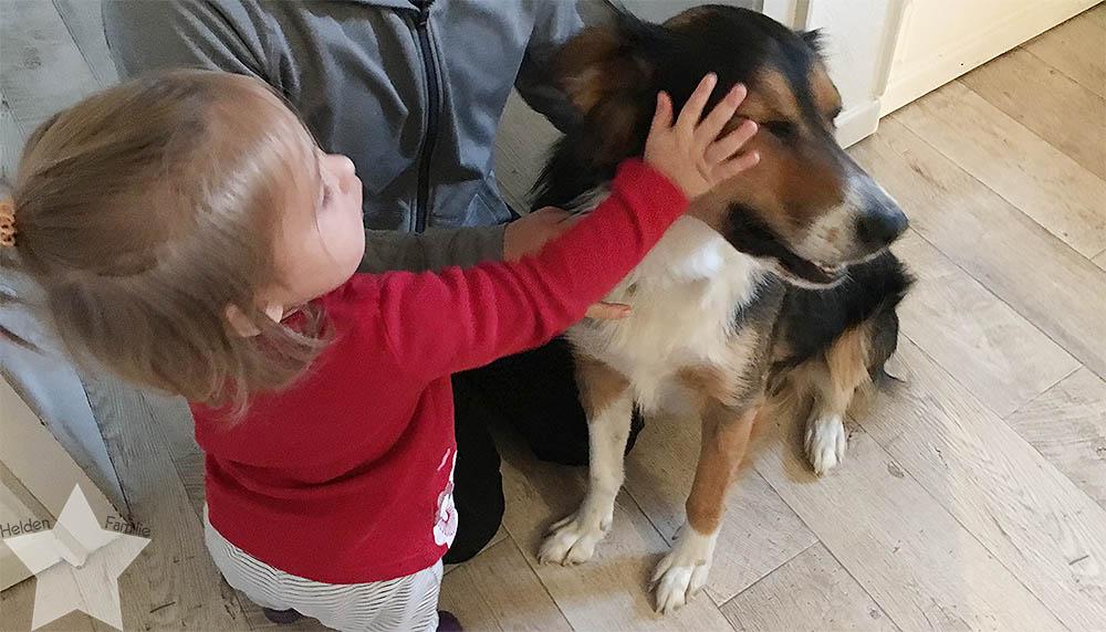 Wochenende in Bildern - Planänderungen - Hund bürsten mit Baby im Weg