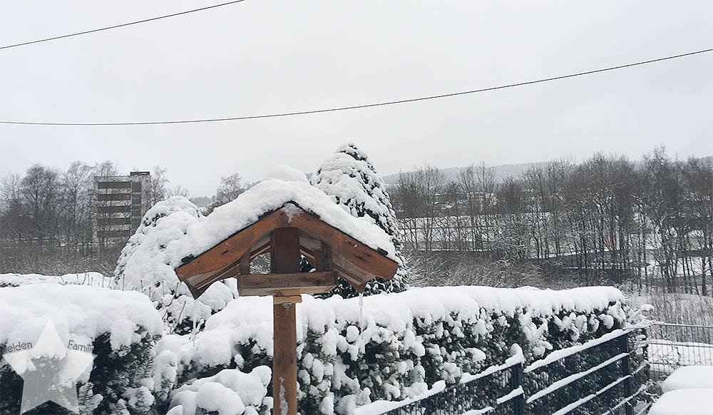 6 Tage bis Entbindungstermin - Enttäuschung: nichts tut sich - Vogelhäuschen im Schnee
