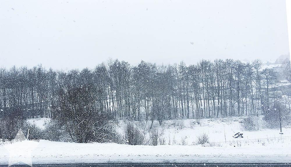 Wochenende in Bildern - Startschuss - Schneefall