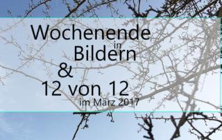 Wochenende in Bildern & 12von12 - Frühling