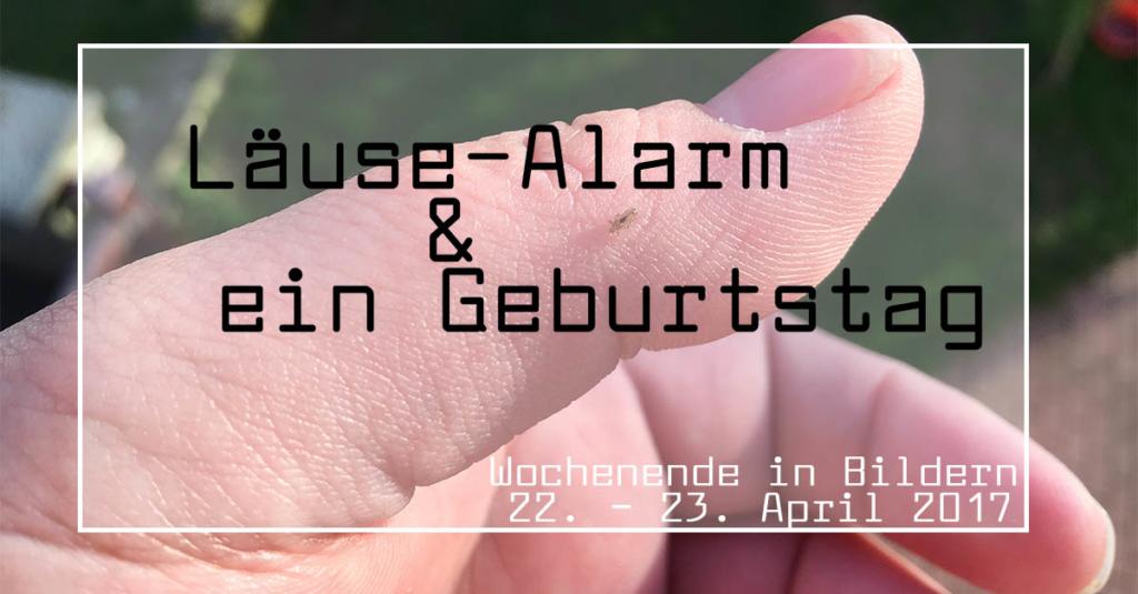 Läuse-Alarm und ein Geburtstag | Wochenende in Bildern 22.-23.04.