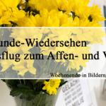 ♥-Freunde-Wiedersehen und Ausflug zum Affen- und Vogelpark | Wochenende in Bildern 20.-21.05.