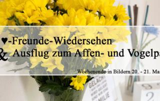 ♥-Freunde-Wiedersehen und Ausflug zum Affen- und Vogelpark   Wochenende in Bildern 20.-21.05.