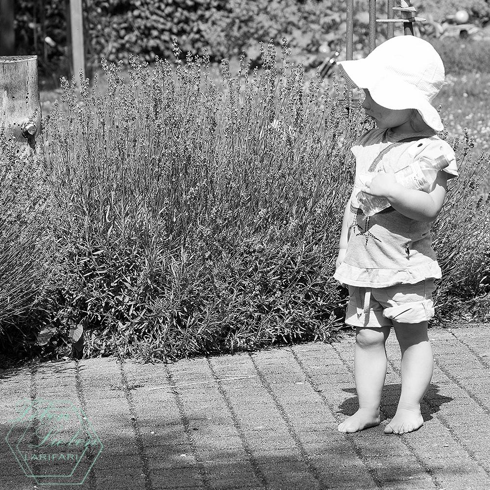 Kinder - Lotte - Kleinkind - 05/2015