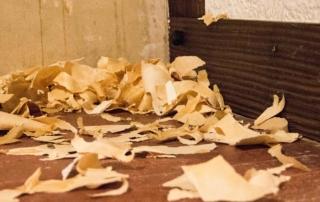 Renovierung - die Tapeten sind ab