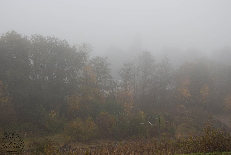 Nebliger Blick ins Dorf
