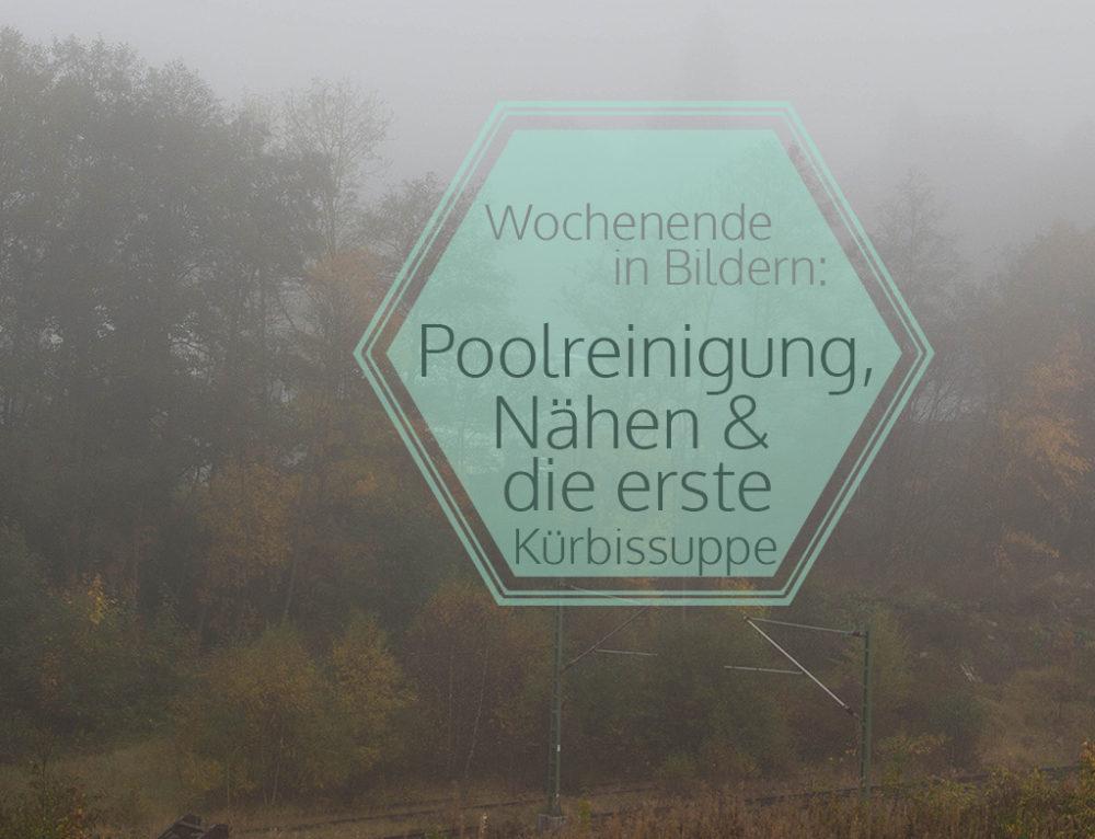 Poolreinigung, Nähen & die erste Kürbissuppe | Wochenende in Bildern 14. – 15. 10.