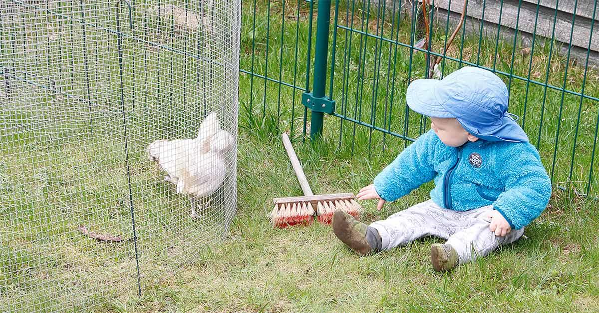 Alltag – zwischen Kinderkram, Hühnern & einem Auftrag | 12von12 im April