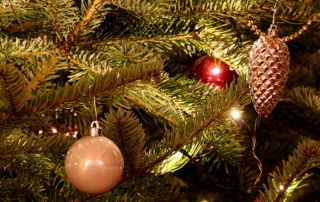 """""""Fünf Fragen am Fünften"""" - über einen spießigen Hund, Weihnachtsgefühle und Ausfülltests"""