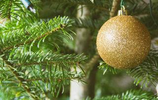 Tschüss Weihnachten, Hallo Alltag.