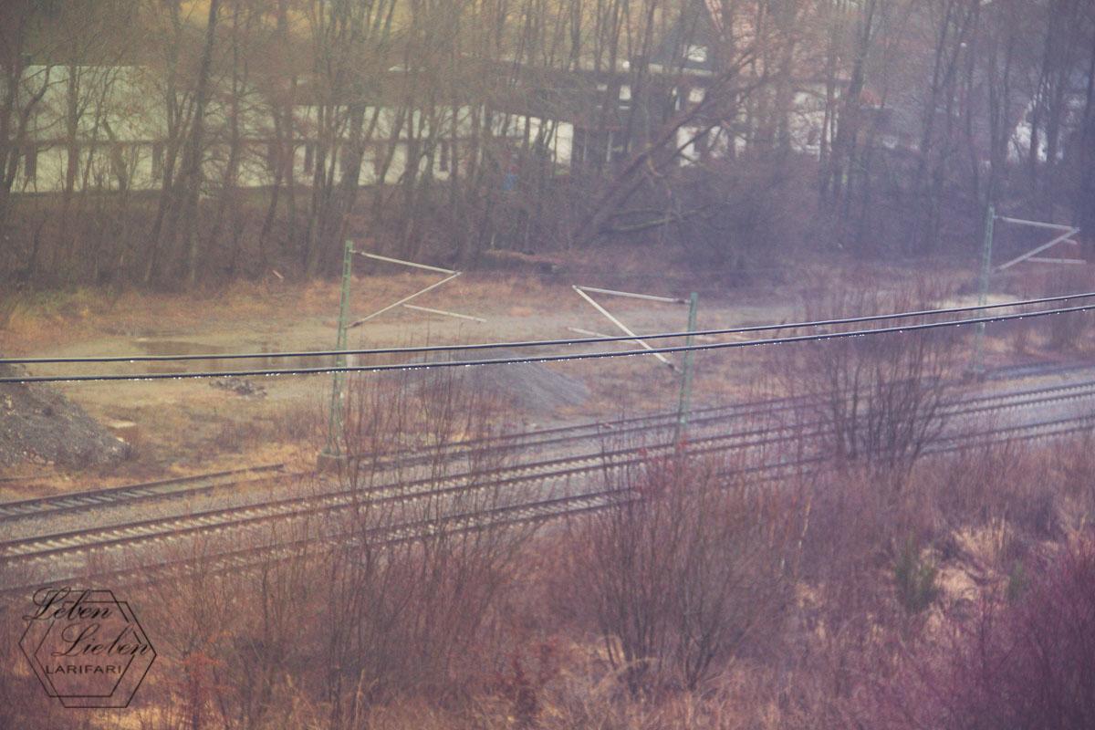 Blick aus dem Fenster: Regen - 12von12 im Januar 2019