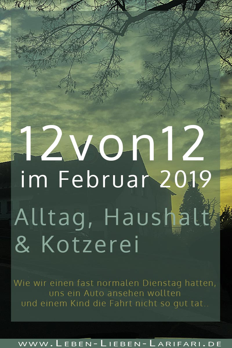 Alltag, Haushalt & Kotzerei | 12von12 im Februar