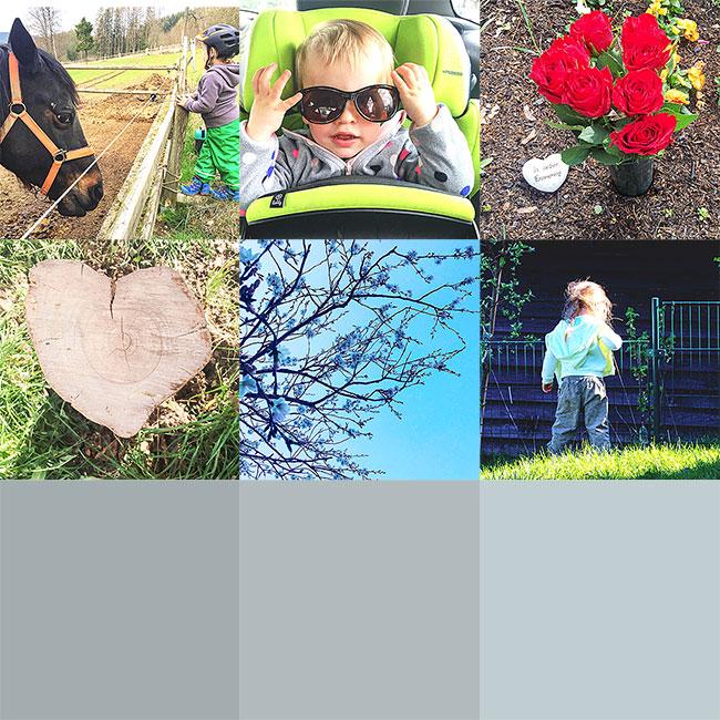Eure Lieblingsbilder im April 2019