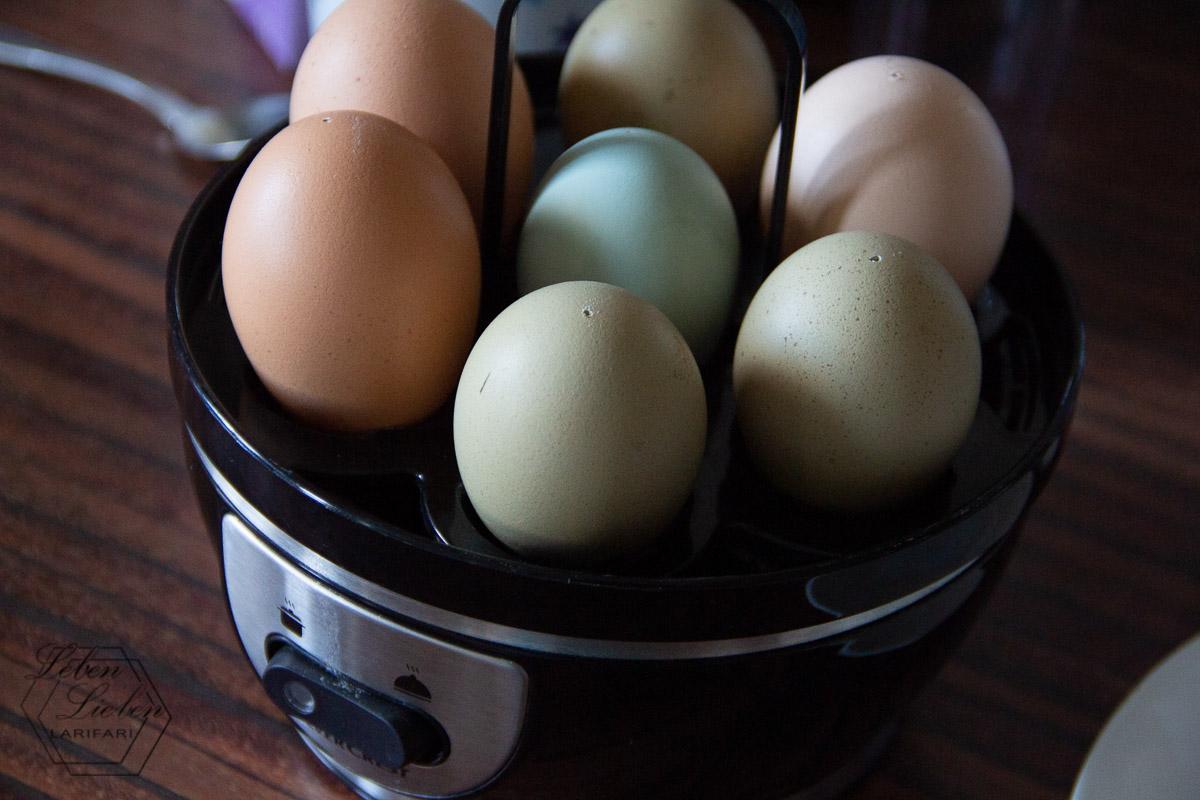 Frühstückseier: Einmal bunt gemischt zum Sonntags-Frühstück