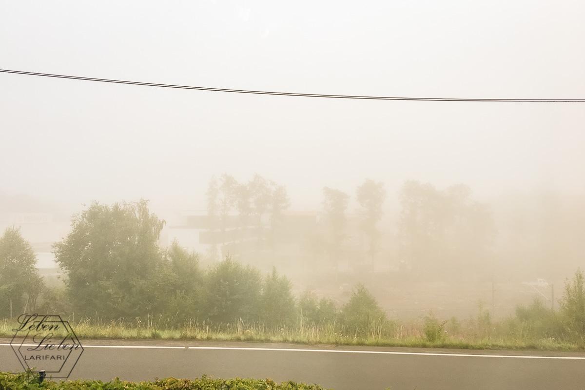 Nebel am Morgen verheißt gutes Wetter, oder?