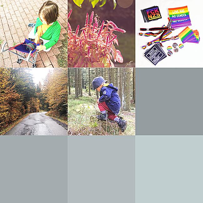 Meine Bilder bei Instagram - August bis Oktober