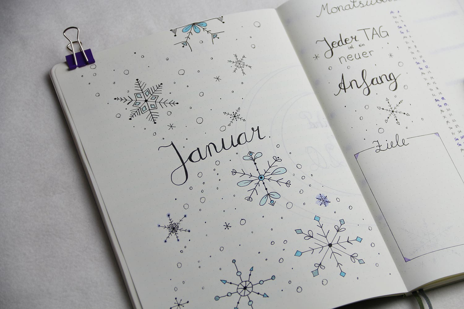 Bullet Journal 2020 - Januar Monatsübersicht links