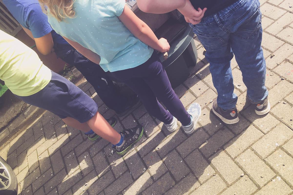 Schulkinder beim Imker
